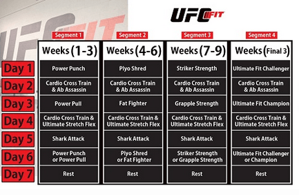 ufc fit workout training program » fitness gizmos